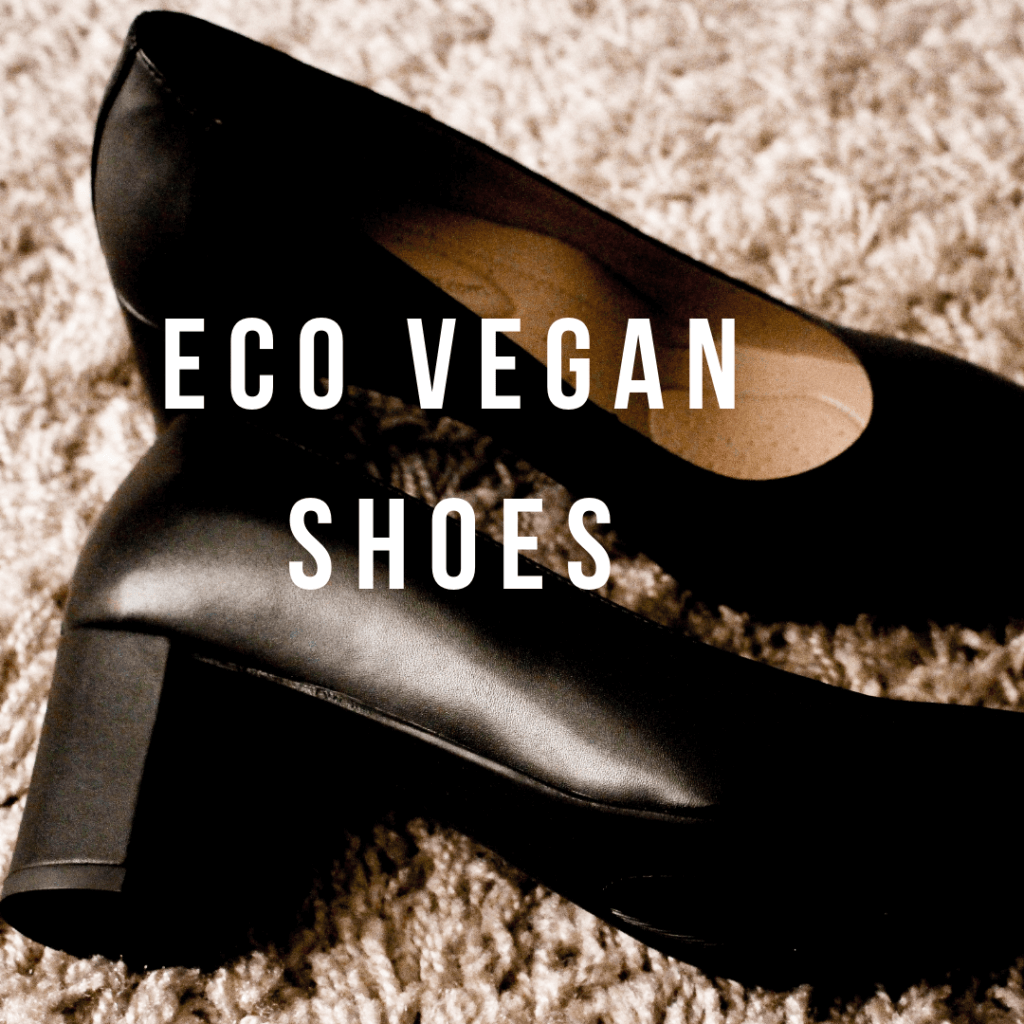 pic of eco vegan shoes
