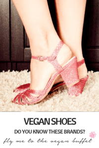 pin for vegan shoes