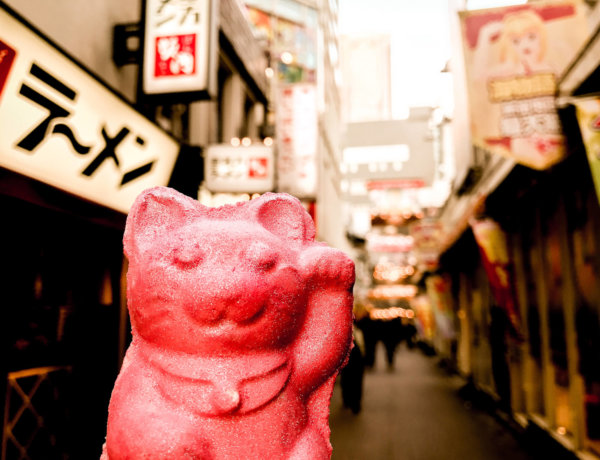 picture of lucky cat bath bomb in Tokio