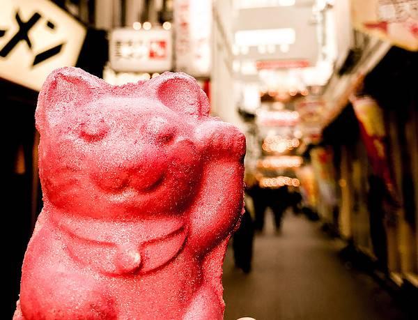 Bild von vegan essen in Tokyo